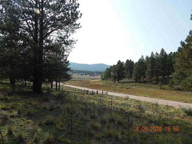 10 Sun Valley Road, Angel Fire, NM 87710 (MLS #105791) :: Angel Fire Real Estate & Land Co.