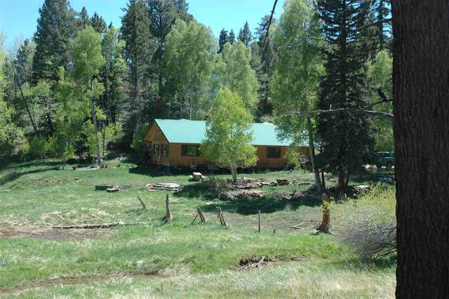 498 Ram Drive, Eagle Nest, NM 87718 (MLS #105793) :: Page Sullivan Group