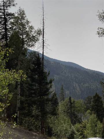 36 Snowshoe Road, Taos Ski Valley, NM 87525 (MLS #105807) :: Page Sullivan Group