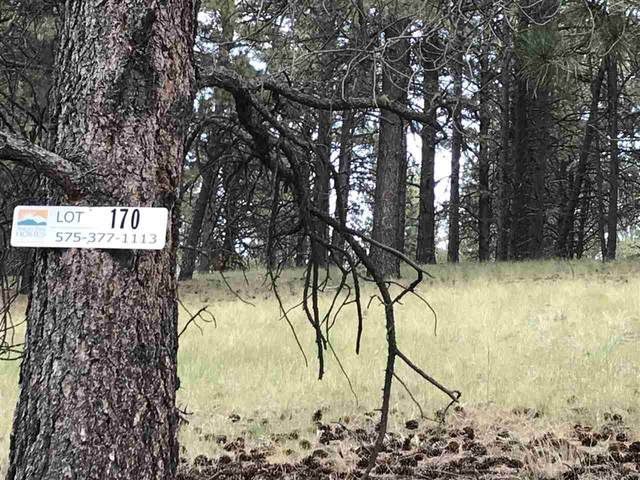 168 S Valle Grande Trail, Angel Fire, NM 87710 (MLS #105812) :: Angel Fire Real Estate & Land Co.