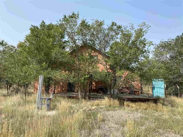 2699 Highway 522, Cerro, NM 87519 (MLS #105813) :: Page Sullivan Group