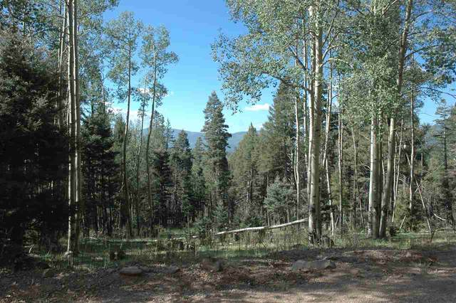 1531 El Camino Real, Angel Fire, NM 87710 (MLS #105817) :: Page Sullivan Group