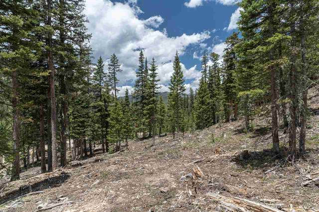 10 Blue Jay Ridge, Taos Ski Valley, NM 87525 (MLS #105819) :: Page Sullivan Group