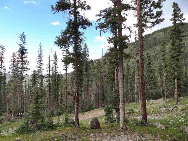 7 Porcupine, Taos Ski Valley, NM 87525 (MLS #105820) :: Page Sullivan Group