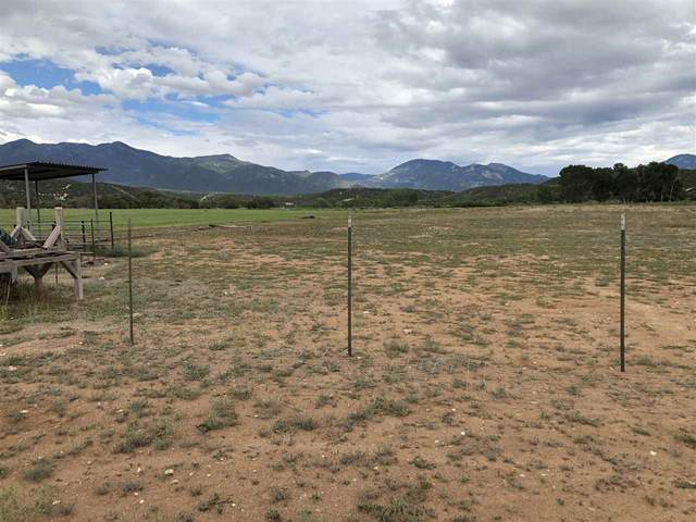 E Hondo Seco Road, Arroyo Hondo, NM 87513 (MLS #105822) :: Page Sullivan Group