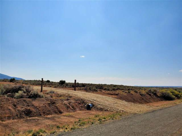 843A County Road 110, Ranchos de Taos, NM 87571 (MLS #105824) :: Page Sullivan Group