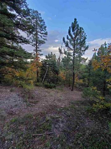 Lot 12 Palo Flechado Ridge Rd, Angel Fire, NM 87710 (MLS #105837) :: Angel Fire Real Estate & Land Co.