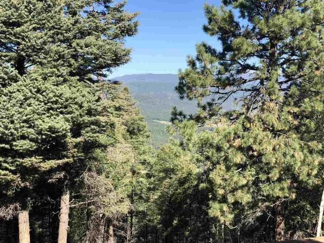 Vail Loop, Angel Fire, NM 87710 (MLS #105847) :: The Chisum Realty Group