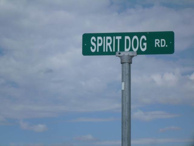 Tract A Spirit Dog, Ranchos de Taos, NM 87557 (MLS #105852) :: Page Sullivan Group
