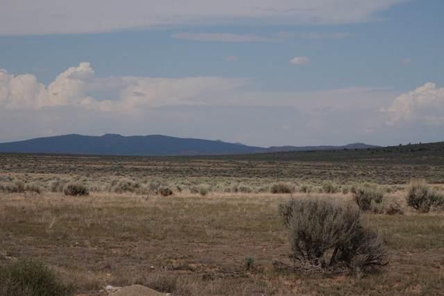2B Sec 2 Two Hawks 2 Peaks Rd, El Prado, NM 87529 (MLS #105864) :: Angel Fire Real Estate & Land Co.