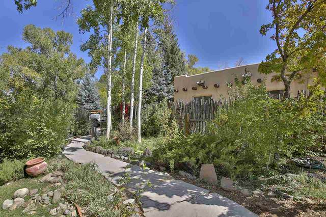131 Upper Ranchitos Road, Taos, NM 87571 (MLS #105890) :: The Chisum Realty Group