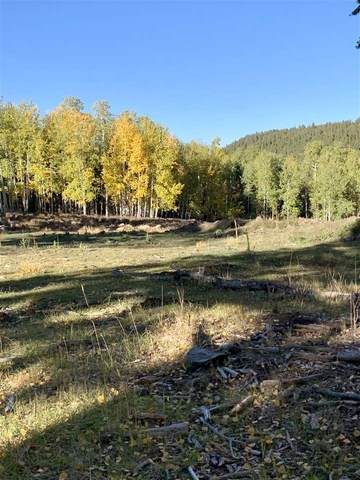 Lot 65 Mertz Place, Angel Fire, NM 87710 (MLS #105894) :: Chisum Realty Group