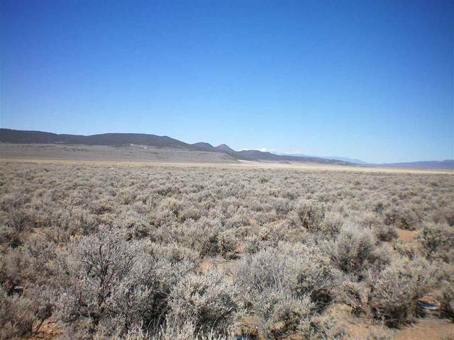 On Costilla Blvd, Amalia, NM 87512 (MLS #105897) :: Angel Fire Real Estate & Land Co.