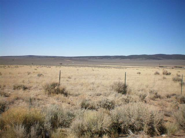 On Panorama Blvd, Amalia, NM 87512 (MLS #105898) :: Page Sullivan Group