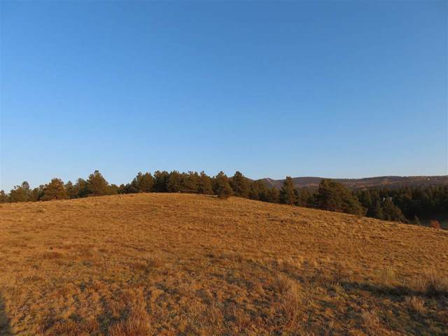 Lot 2A Horseshoe Bend, Angel Fire, NM 87710 (MLS #105923) :: The Chisum Realty Group
