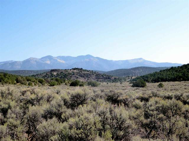 46 Trementina Trail, Arroyo Hondo, NM 87513 (MLS #105967) :: The Chisum Realty Group