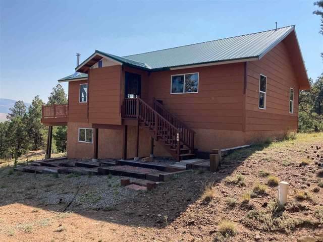 139 Cerro Verde, Colfax County/County Road B-6, NM 87710 (MLS #105969) :: Page Sullivan Group