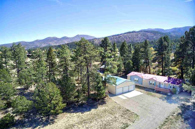 29734 Us Hwy 64, Ute Park, NM 87749 (MLS #105974) :: The Chisum Realty Group