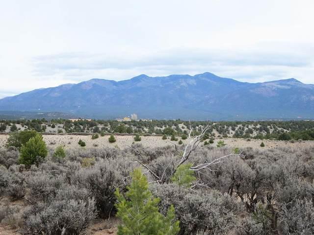 Sandia Canyon Lot 23, Taos, NM 87571 (MLS #106018) :: Page Sullivan Group