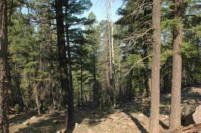 584 Panorama Way, Angel Fire, NM 87718 (MLS #106022) :: Page Sullivan Group