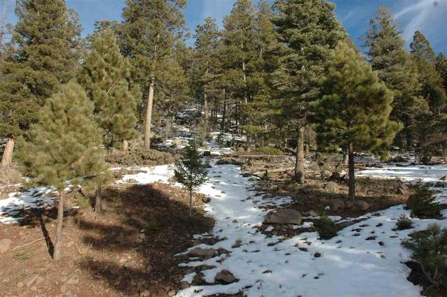 648 Panorama Way, Angel Fire, NM 87710 (MLS #106023) :: Angel Fire Real Estate & Land Co.