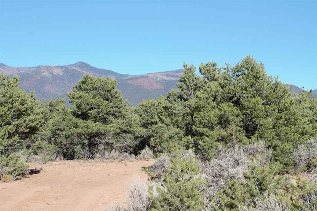 Hondo Seco Road, El Prado, NM 87529 (MLS #106025) :: Page Sullivan Group