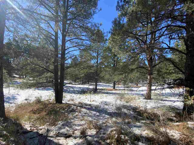 Lot 80 Alta Road, Angel Fire, NM 87710 (MLS #106033) :: Angel Fire Real Estate & Land Co.