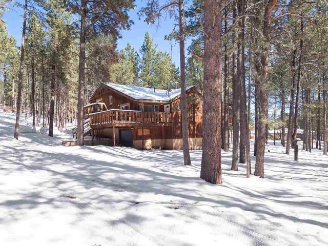 22 Pine Tree, Angel Fire, NM 87710 (MLS #106036) :: Page Sullivan Group