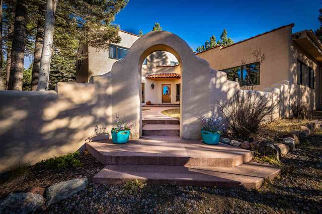 18 Meadowbrook Terrace, Angel Fire, NM 87710 (MLS #106049) :: Angel Fire Real Estate & Land Co.