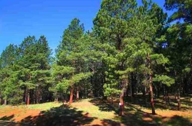 Lot 120 San Juan, Angel Fire, NM 87710 (MLS #106057) :: Angel Fire Real Estate & Land Co.