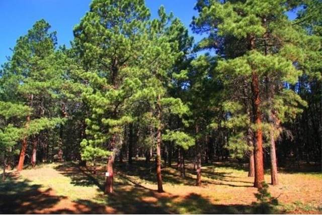 Lot 123 San Juan, Angel Fire, NM 87710 (MLS #106058) :: Angel Fire Real Estate & Land Co.
