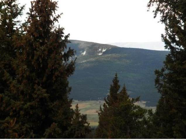 lot 82 El Camino Real, Angel Fire, NM 87710 (MLS #106060) :: Angel Fire Real Estate & Land Co.