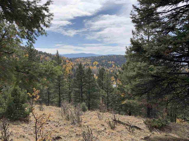 421 El Camino Real, Angel Fire, NM 87710 (MLS #106074) :: Page Sullivan Group
