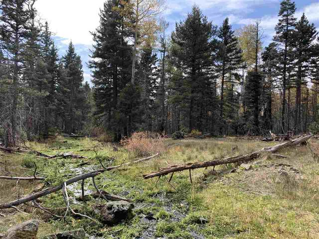 1138 Panorama Way N, Angel Fire, NM 87710 (MLS #106075) :: Angel Fire Real Estate & Land Co.