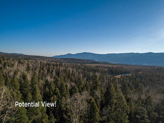 1142A Panorama Way, Angel Fire, NM 87710 (MLS #106084) :: Angel Fire Real Estate & Land Co.