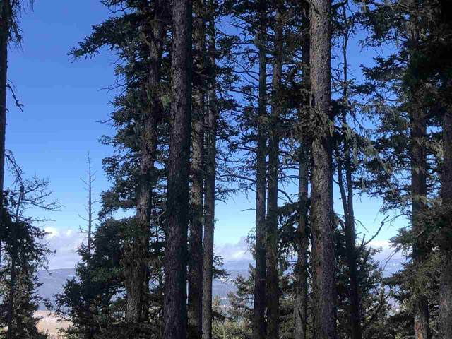 Lot 26 Hidden Lake, Angel Fire, NM 87710 (MLS #106089) :: Chisum Realty Group