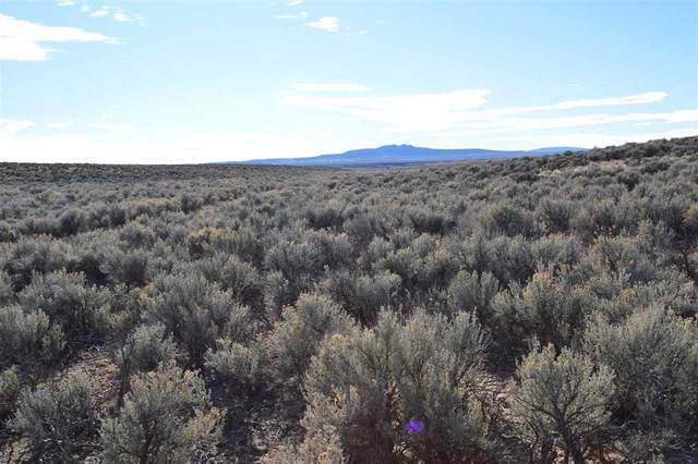 Lot 4 Tune Drive, El Prado, NM 87529 (MLS #106097) :: Page Sullivan Group
