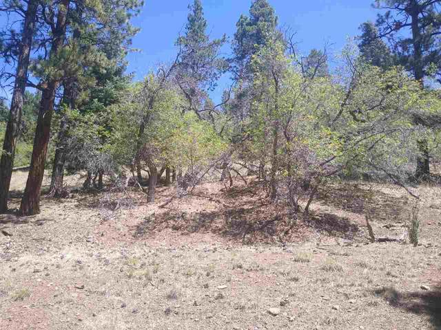 09 Upper Road, Angel Fire, NM 87710 (MLS #106109) :: Chisum Realty Group