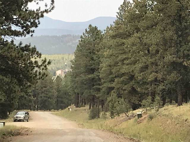 170 Sierra Blanca Drive, Angel Fire, NM 87710 (MLS #106113) :: Angel Fire Real Estate & Land Co.