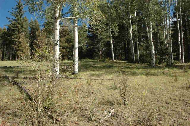 1552 El Camino Real, Angel Fire, NM 87710 (MLS #106121) :: Angel Fire Real Estate & Land Co.