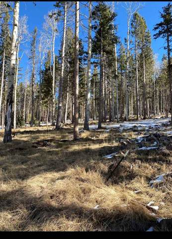 1459A Cheerful Way, Angel Fire, NM 87710 (MLS #106127) :: Angel Fire Real Estate & Land Co.