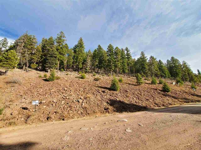 lot 1134 El Camino Real, Angel Fire, NM 87710 (MLS #106130) :: Angel Fire Real Estate & Land Co.