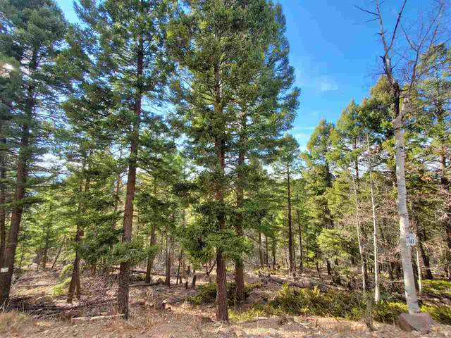 Lot 657 Panorama Way, Angel Fire, NM 87710 (MLS #106131) :: Angel Fire Real Estate & Land Co.