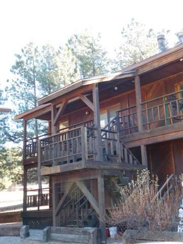 20 Squaw Valley Ln, Angel Fire, NM 87710 (MLS #106139) :: Chisum Realty Group