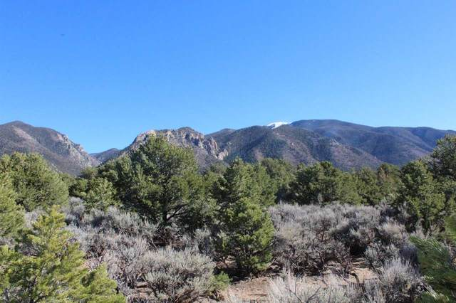 S Of Junction Latir And Quintana Rd, Questa, NM 87556 (MLS #106146) :: Angel Fire Real Estate & Land Co.