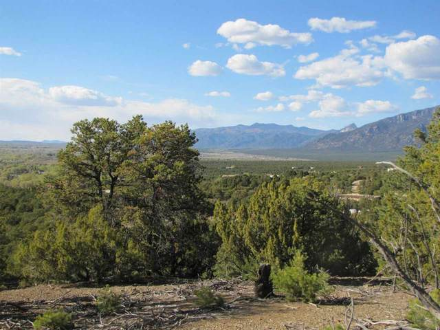 Sunset Bluebird Lane, Taos, NM 87571 (MLS #106150) :: Angel Fire Real Estate & Land Co.