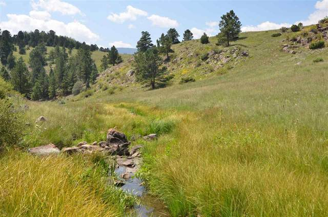Black Lake Resorts Road 1, Angel Fire, NM 87710 (MLS #106160) :: Page Sullivan Group