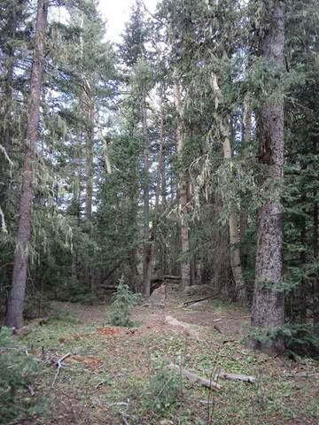 Lot 43 Happy Way, Angel Fire, NM 87710 (MLS #106166) :: Angel Fire Real Estate & Land Co.