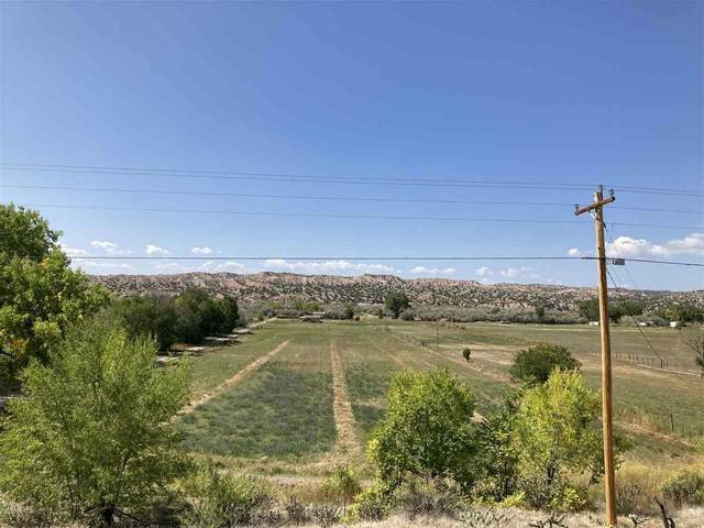 34927 Highway 285, ojo caliente, NM 87549 (MLS #106170) :: Angel Fire Real Estate & Land Co.