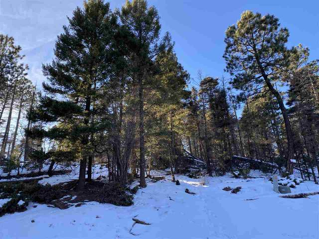 Lot 352 Vail Loop, Angel Fire, NM 87710 (MLS #106179) :: Angel Fire Real Estate & Land Co.
